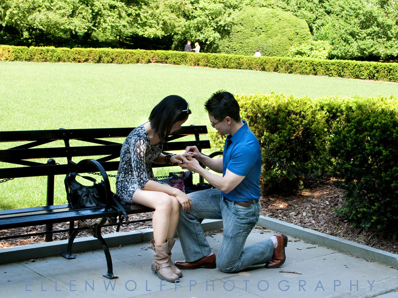 Surprise engagement in Central Park
