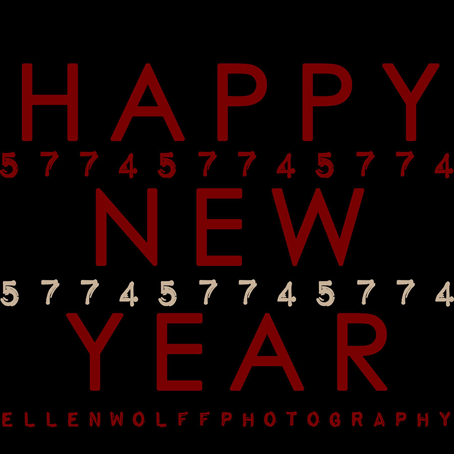 5774 Jewish New Year Greeting from Ellen Wolff Photography