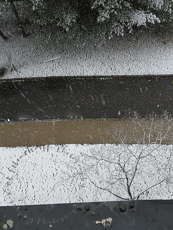 Spring-Equinox-last-snow-storm-2015-03-20ss
